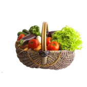 Healthy Recipes Sites icon
