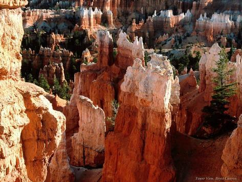 Canyons HD Wallpapers apk screenshot