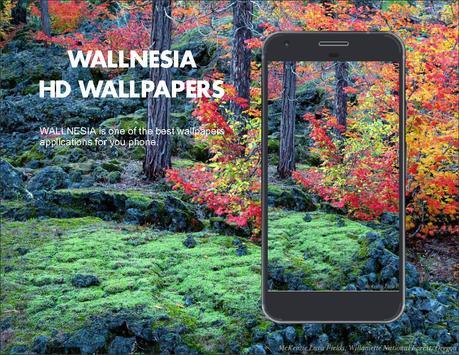 Best Fall Seasons HD Wallpapers poster