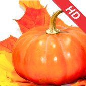 Best Thanksgiving HD Wallpapers icon