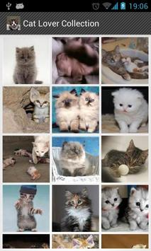 Cat Lovers Collection poster