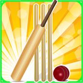 T20 Cricket Blast 2014 icon