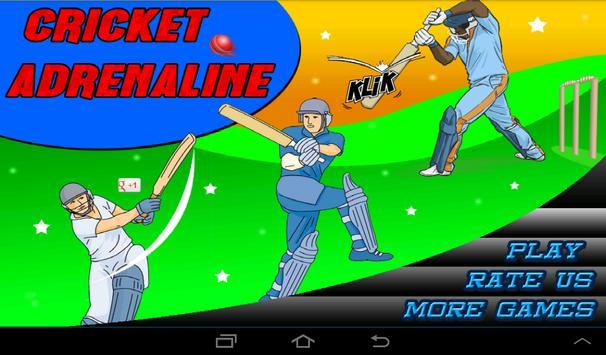T20 Cricket Blast 2014 poster