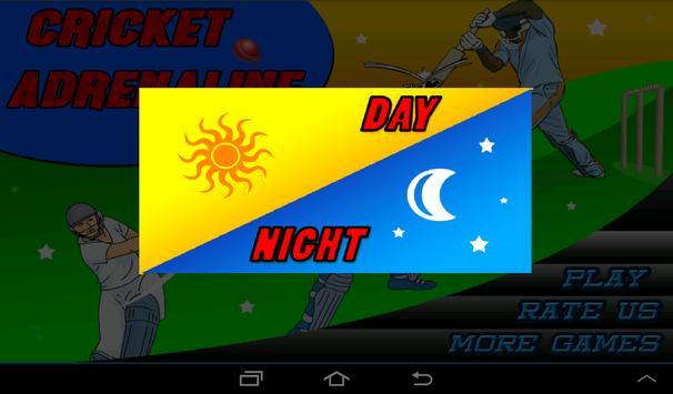 T20 Cricket Blast 2014 apk screenshot