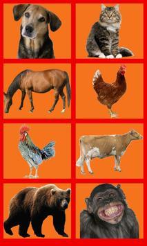 Animal Sounds Soundboard poster