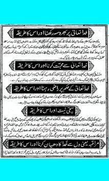 Bahishti Zewar (Urdu) poster