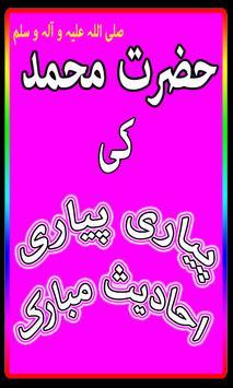 Aik Hazaar Ahadees Nabvi poster