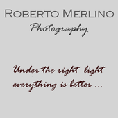 Roberto Merlino Photo icon