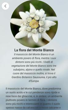 BH - Monte Bianco poster