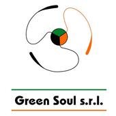Green Soul icon