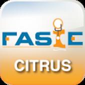 FASIE icon