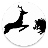 S.P.I.A. icon