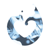 Buyers 2017 icon