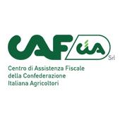CAF CIA icon