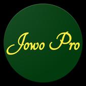 Jowo Properti icon