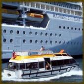 Caribbean Cruise wallpaper icon