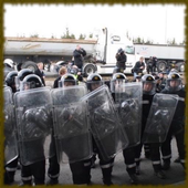 Riot Police wallpaper icon