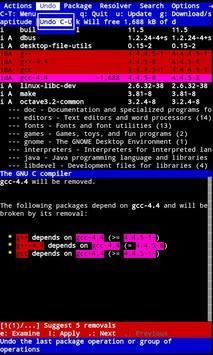 Terminal Emulator screenshot 2