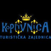 TZ grada Koprivnice icon