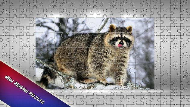 Raccoon Jigsaw Puzzle for Kids poster