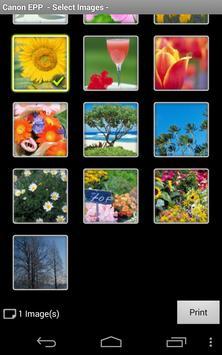 Canon Easy-PhotoPrint screenshot 1