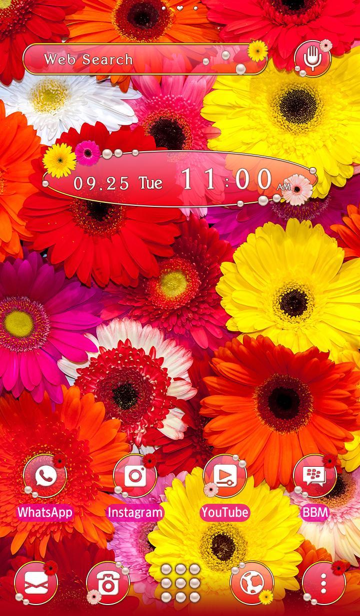 Android 用の 花壁紙アイコン カラフルなガーベラ 無料 Apk をダウンロード