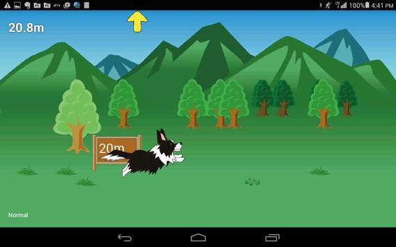 Disc Dog (Frisbee dog) screenshot 3