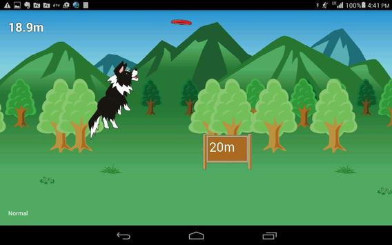 Disc Dog (Frisbee dog) screenshot 4