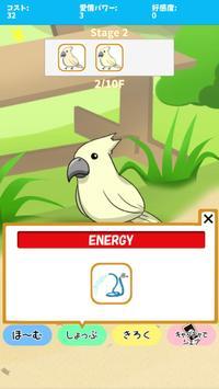 birdwatch ~healing-game~ screenshot 3