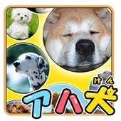 Brain Training-Aha dog picture icon