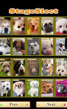 Brain Training-Aha dog picture screenshot 1