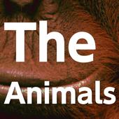 The animals icon