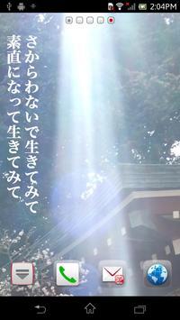 癒しの光 ライブ壁紙 ~ れい華さんの日めくりカレンダー poster