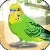 Parakeet Zeichen