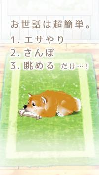 癒しの子犬育成ゲーム〜柴犬編〜 apk screenshot