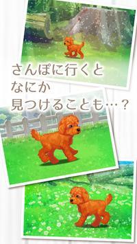 癒しの子犬育成ゲーム〜トイプードル編〜 screenshot 3