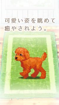 癒しの子犬育成ゲーム〜トイプードル編〜 screenshot 14