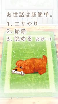 癒しの子犬育成ゲーム〜トイプードル編〜 screenshot 1