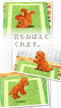 癒しの子犬育成ゲーム〜トイプードル編〜 screenshot 2