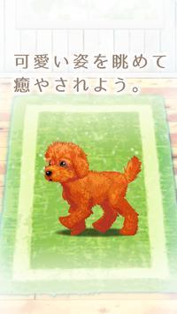癒しの子犬育成ゲーム〜トイプードル編〜 screenshot 4