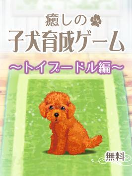 癒しの子犬育成ゲーム〜トイプードル編〜 screenshot 5