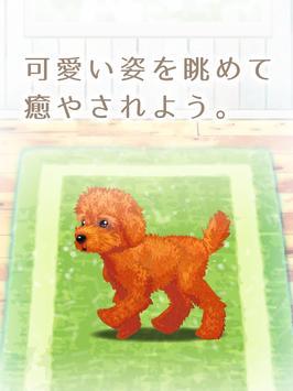 癒しの子犬育成ゲーム〜トイプードル編〜 screenshot 9