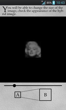 Hybrid Image Generator screenshot 2