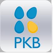 PKB SOLUTION icon