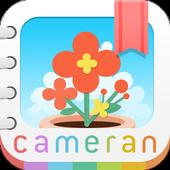 cameran album icon