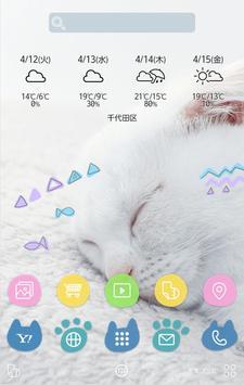白ねこ壁紙きせかえ apk screenshot