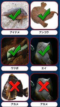 魚の名前当てポップアップクイズ apk screenshot