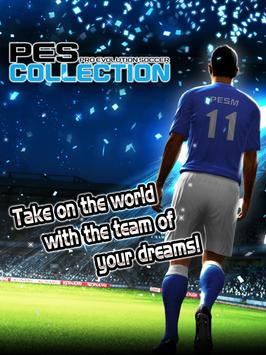 PES COLLECTION ポスター