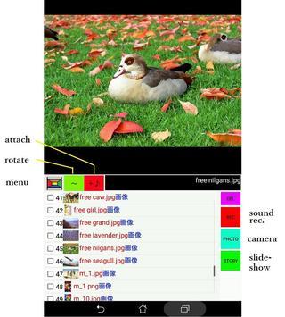 画像と声のギャラリー screenshot 2