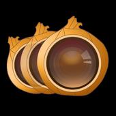 Onion Photo Skin icon